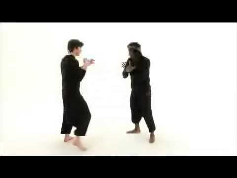 Pencak Silat-Hand and Footwork by Tony Felix & Jason Kelly Image 1