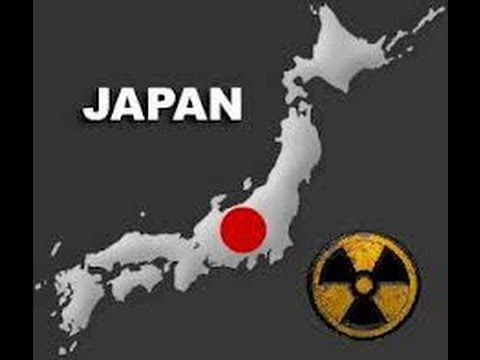 Japanese official: North Korea ballistic missile hit Japan