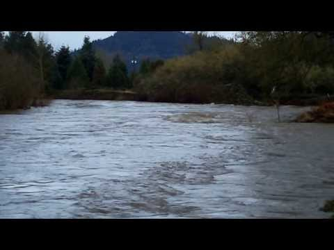 Calapooia River Flood - Crawfordsville, Brownsville, and Albany, Oregon