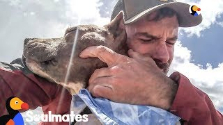 Man And His Dog Change Each Other's Lives - PJ & Clove Update   The Dodo Soulmates