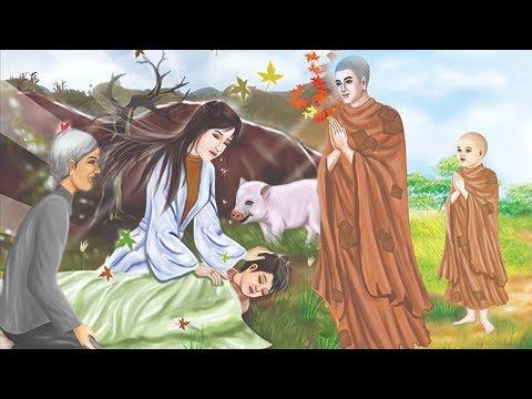 Nghe Câu Truyện Phật Giáo Này KHÓC KHÔ NƯỚC MẮT Quá THÊ LƯƠNG | Truyện Phật Giáo Hay Nhất thumbnail