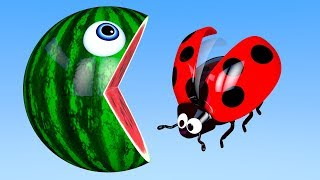 Learn Colors with PACMAN and Farm Ladybug WaterMelon Street Vehicle for Kid Children