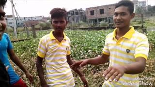 7 star  Bangla Funny video 2017