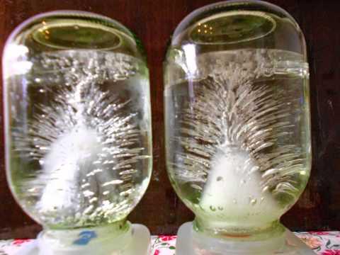 Талая вода в домашних условиях в бутылках