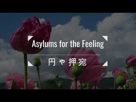 Asylums for the Feeling 円ゃ押宛