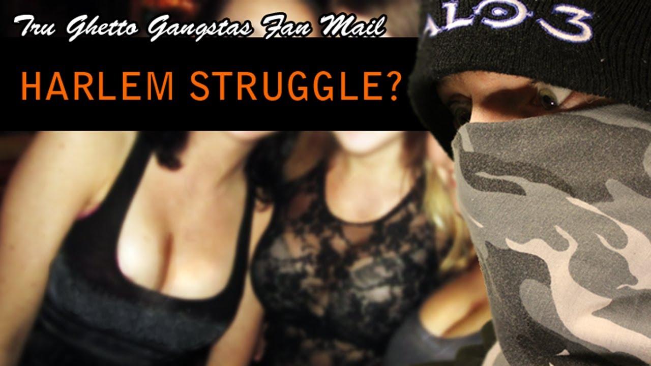 harlem struggle