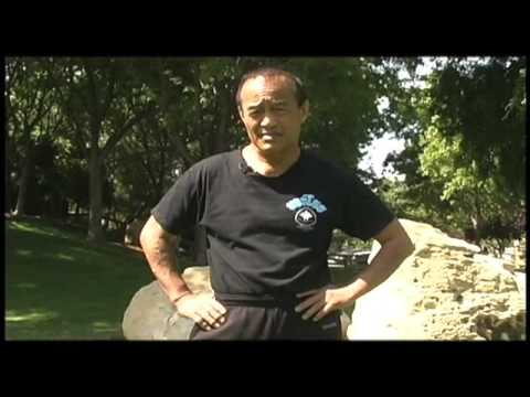 Dan Inosanto opening the video for Ron Balicki's Jun Fan Jeet Kune Do Instructors DVD Series Image 1