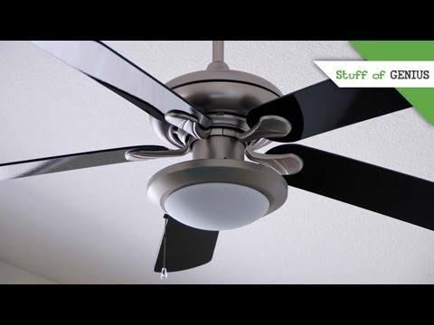 Philip Diehl and the Ceiling Fan - Stuff of Genius