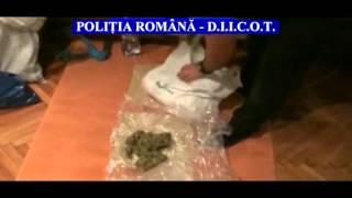 Cannabis prin posta Ploiesti