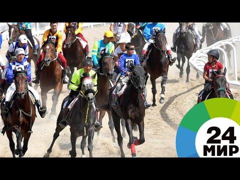Кыргызские скакуны показали красоту и мощь на Играх кочевников - МИР 24