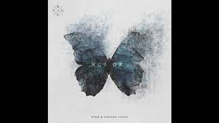 Kygo & Chelsea Cutler - Not Ok (Official Audio)