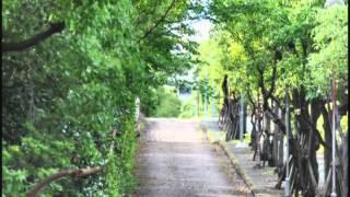 Next泉大津(「泉大津市プロモーション映像コンテスト2012」最優秀作品)