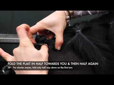 Mane Plaiting Bands How to Plait a Horse 39 s Mane
