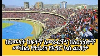 TPLF vs artists football
