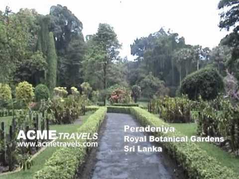 Peradeniya Sri Lanka Acme Travels
