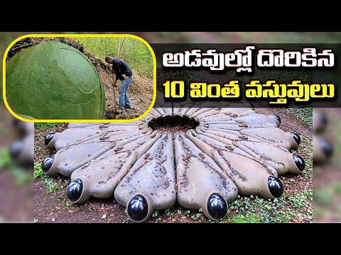 Top 10 Mysterious Things Found in Woods