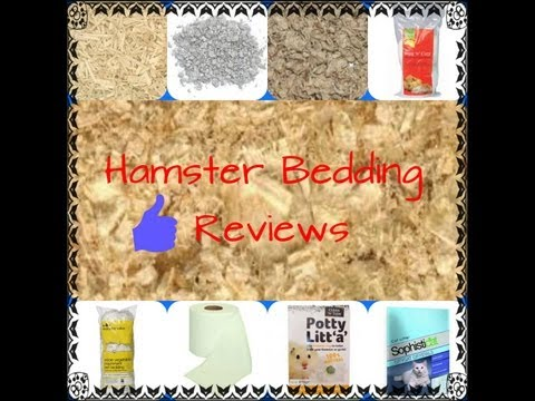 Hamster Bedding Reviews! - Smashpipe Animals