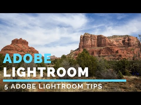 Adobe Lightroom Tutorial For Beginners: 5 Things You Must Know