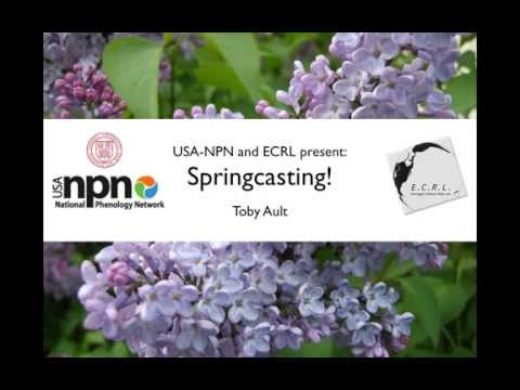 NN Webinar: USA-NPN and the Emerging Climate Risk Lab of Cornell Present 'Springcasting!'
