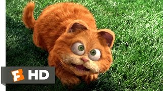 Video clip Garfield (2/5) Movie CLIP - Odie Saves Garfield (2004) HD