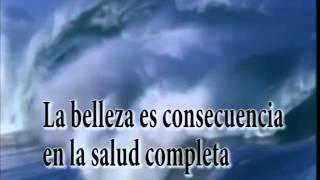 BODYLOGIC en constellacion universal La cancion