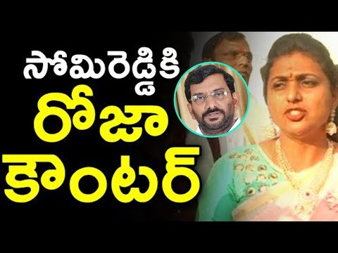 MLA Roja Counters On Somireddy Chandramohan Reddy | TDP Vs YSRCP | AP Updates | Indiontvnews