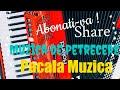 Muzica De Petrecere Mega Veselie 2018 37368173807 mp3