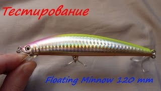 Floating Minnow 120 mm