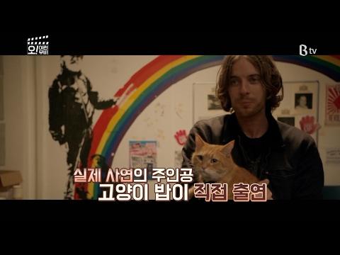 [B tv 영화 추천] 내 어깨 위 고양이, 밥 (A Street Cat Named Bob, 2016)