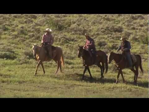 Utah Cattle Drive - Ranching Round-Up: America's Heartland