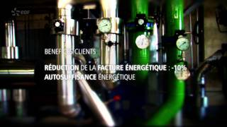 EDF Fenice - the energy efficiency specialist - LONDON 2012
