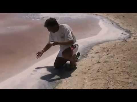 a Wanderful saline lake Sinai, ras Mohammad, Egypt