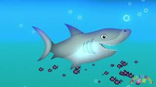 ANIMALS IN THE OCEAN Nursery Rhymes TV  Toddler Kindergarten Preschool Baby Songs