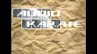 Watch Audio Karate Monster In Disguise video