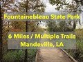 Fountainebleau State Park - Trails in Louisiana Near New Orleans