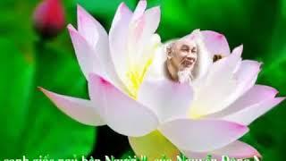 Chung con canh giac ngu ben Nguoi     Youtube   May  nguyenthe6