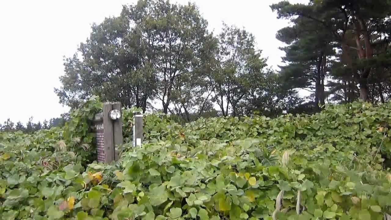<b>座散乱木遺跡</b> 2011年10月 - YouTube