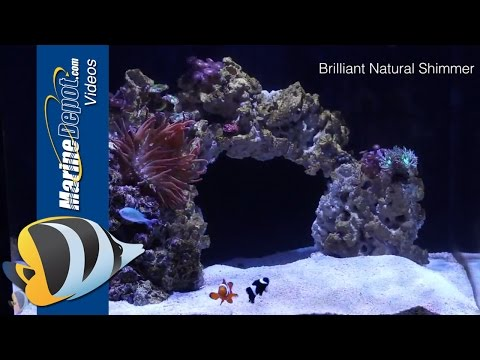 Kessil A160WE LED Aquarium Light - Product Overview