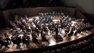 Tchaikovsky Symphony No 5 On Dvd Blu Ray Valery Gergiev Mariinsky Orchestra