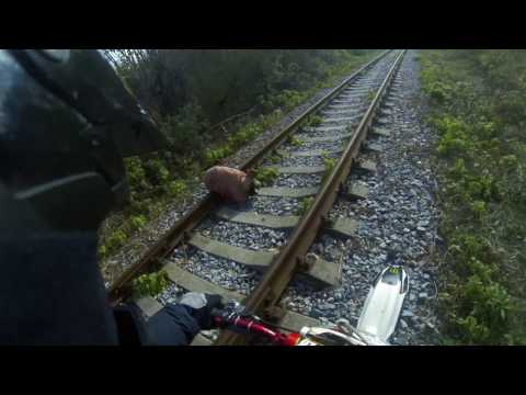 Мотоциклист спас связанную собаку на рельсах \ Biker rescued related dog on the rails