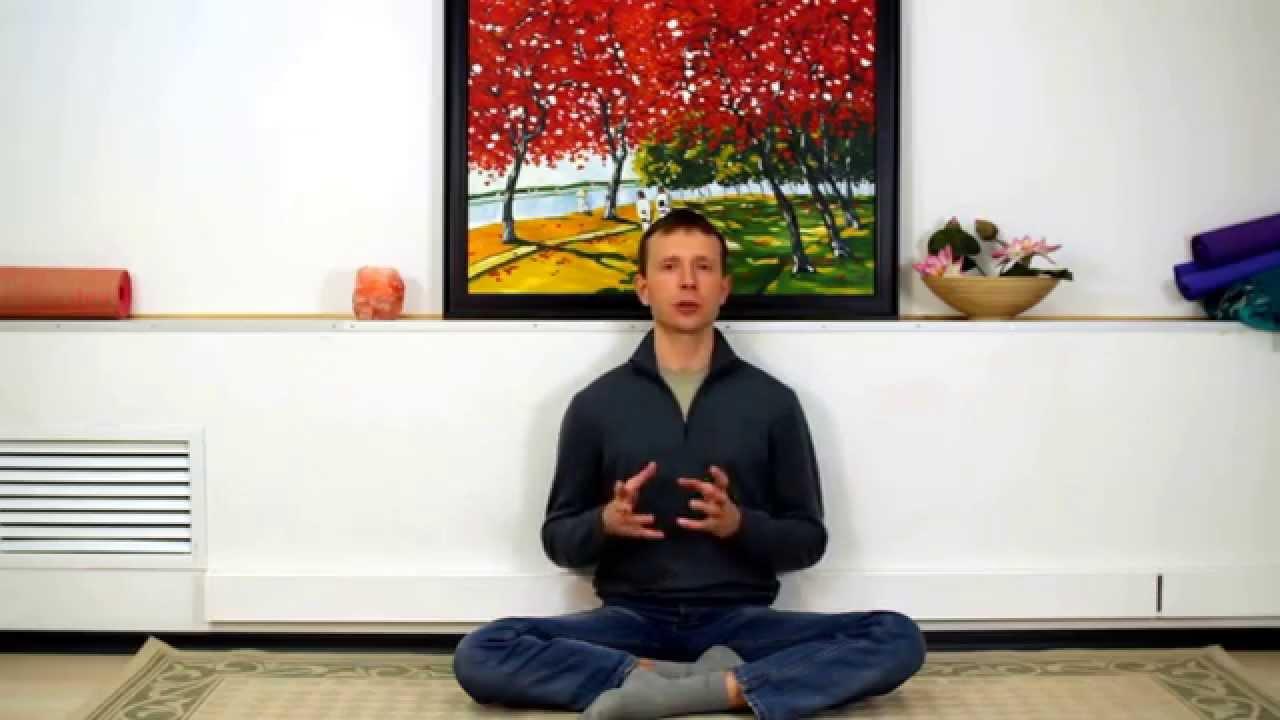 Видео занятия йогой для начинающих в домашних условиях