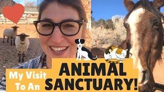 My Visit to Best Friends Animal Sanctuary in Utah!    Mayim Bialik