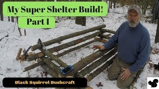 Super Shelter Build Part I