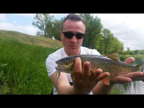 как ловить на реке цимла