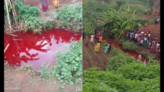 Multiple Rivers Turn Blood Red In Malawi and Indonesia, Leaving Residents Baffled
