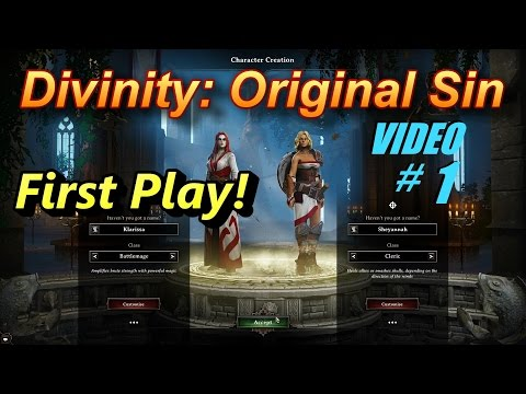 divinity original sin character guide