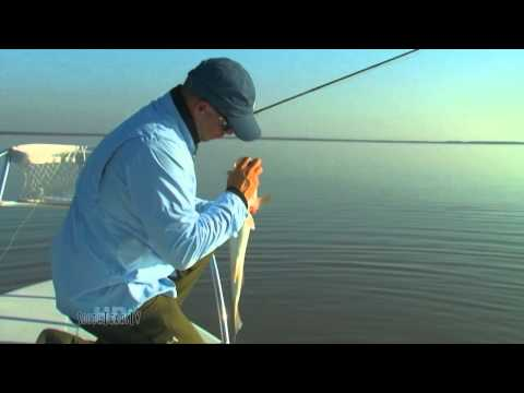 Fly Fishing on the Lower Laguna Madre