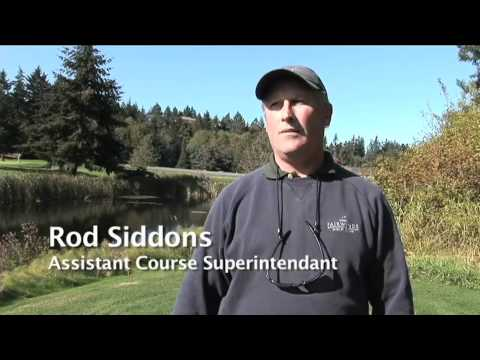 The Fairwinds Golf Experience