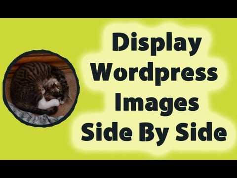 Display Wordpress Images Side By Side