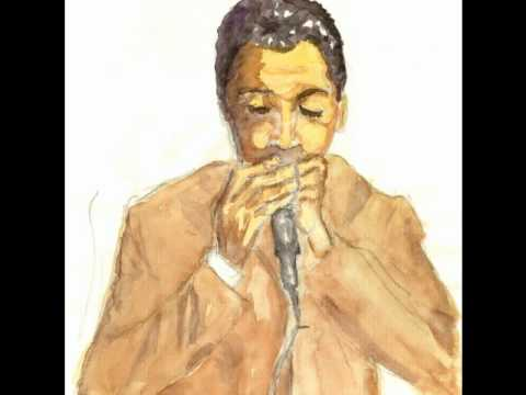 Muddy Waters - Diamonds at Her Feet